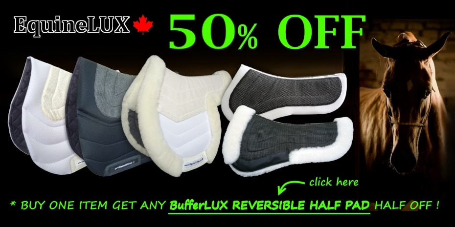 English saddle pads with inserts
