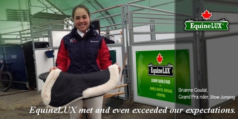 EquineLUX Saddle Pads