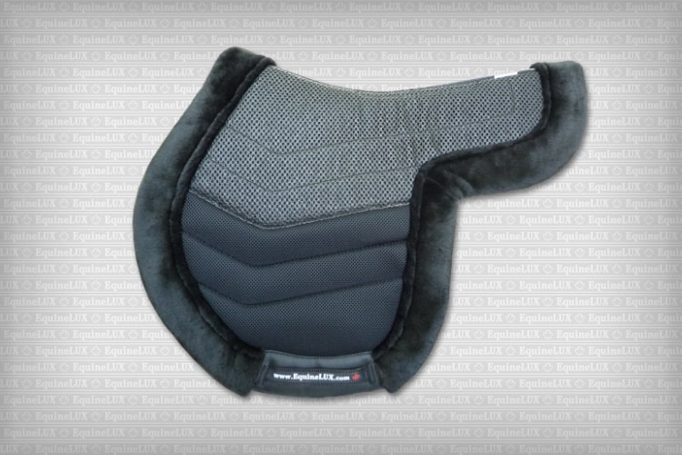 Hunter saddle pad with cotton lining and fleece roll and HR foam inserts (black)